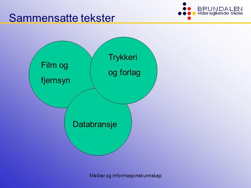 Medier og informasjonskunnskap Sammensatte tekster Film og fjernsyn Trykkeri og forlag Databransje