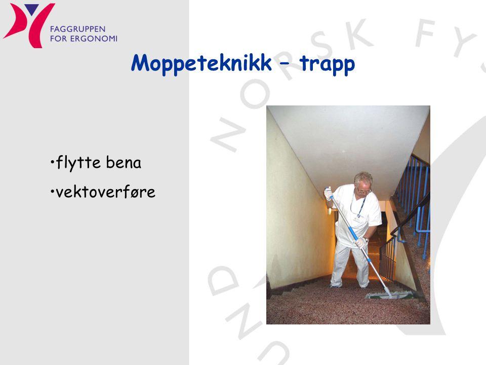 Moppeteknikk – trapp •flytte bena •vektoverføre