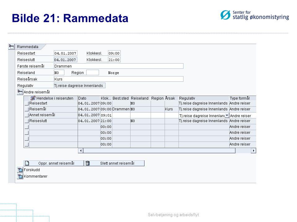 Selvbetjening og arbeidsflyt Bilde 21: Rammedata