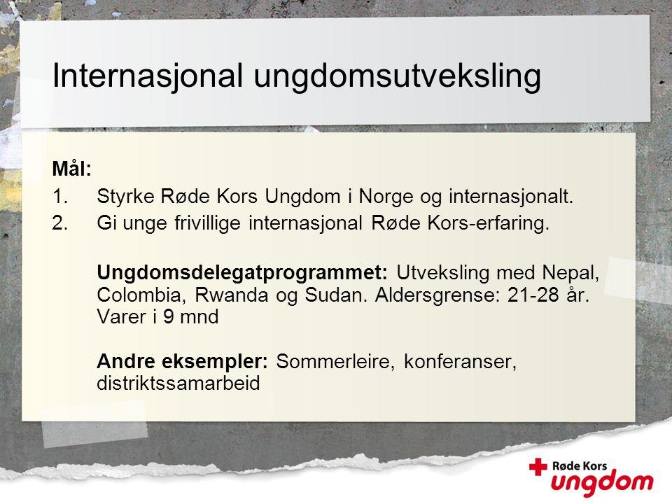 Mål: 1.Styrke Røde Kors Ungdom i Norge og internasjonalt. 2.Gi unge frivillige internasjonal Røde Kors-erfaring. Ungdomsdelegatprogrammet: Utveksling