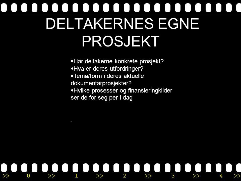 >>0 >>1 >> 2 >> 3 >> 4 >> DELTAKERNES EGNE PROSJEKT  Har deltakerne konkrete prosjekt?  Hva er deres utfordringer?  Tema/form i deres aktuelle doku