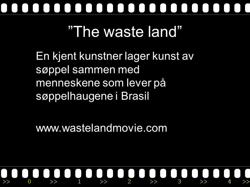""">>0 >>1 >> 2 >> 3 >> 4 >> """"The waste land"""" En kjent kunstner lager kunst av søppel sammen med menneskene som lever på søppelhaugene i Brasil www.waste"""
