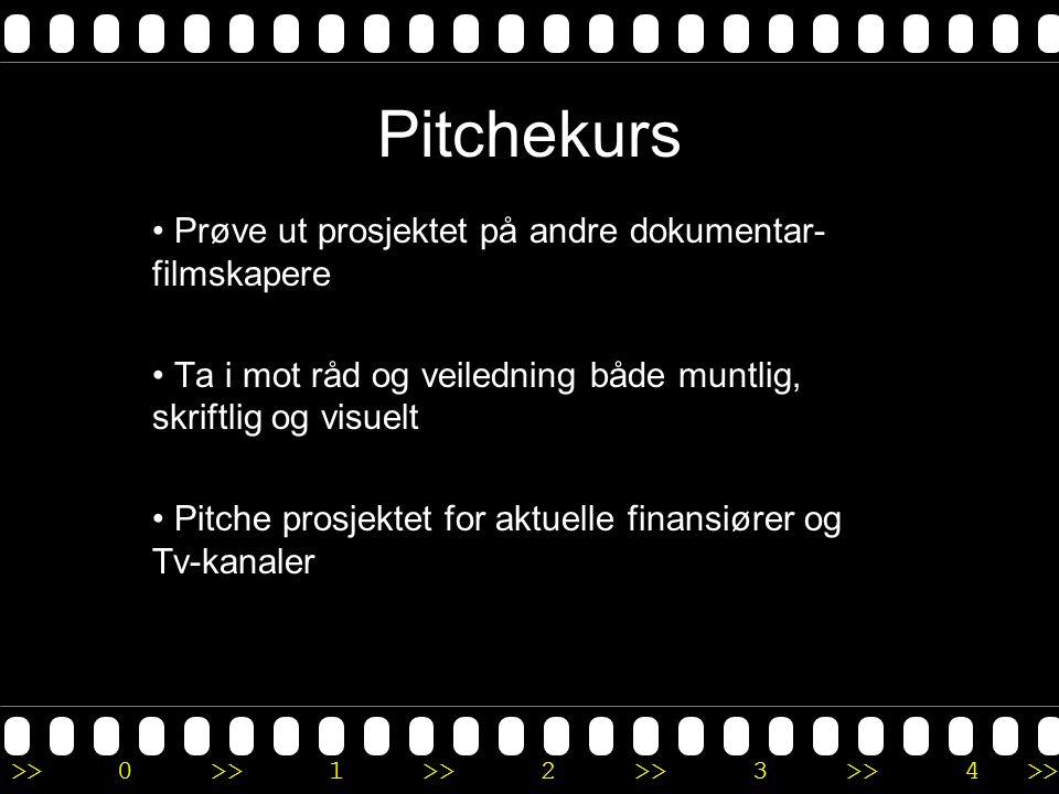 >>0 >>1 >> 2 >> 3 >> 4 >> Pitchekurs • Prøve ut prosjektet på andre dokumentar- filmskapere • Ta i mot råd og veiledning både muntlig, skriftlig og vi