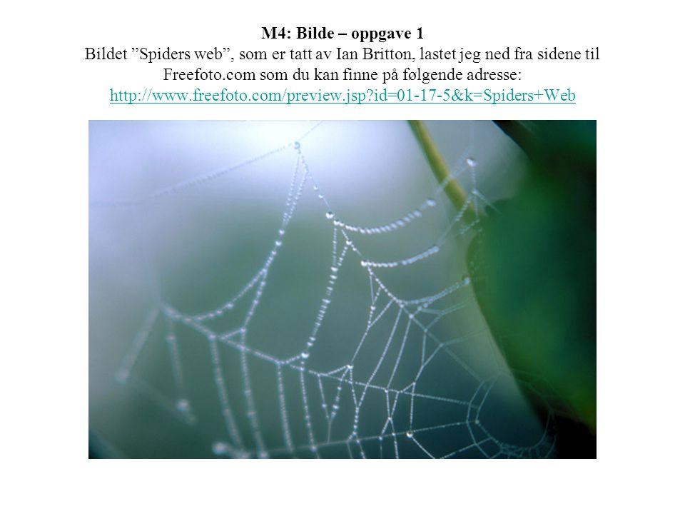M4: Bilde – oppgave 1 Bildet Spiders web , som er tatt av Ian Britton, lastet jeg ned fra sidene til Freefoto.com som du kan finne på følgende adresse: http://www.freefoto.com/preview.jsp?id=01-17-5&k=Spiders+Web http://www.freefoto.com/preview.jsp?id=01-17-5&k=Spiders+Web