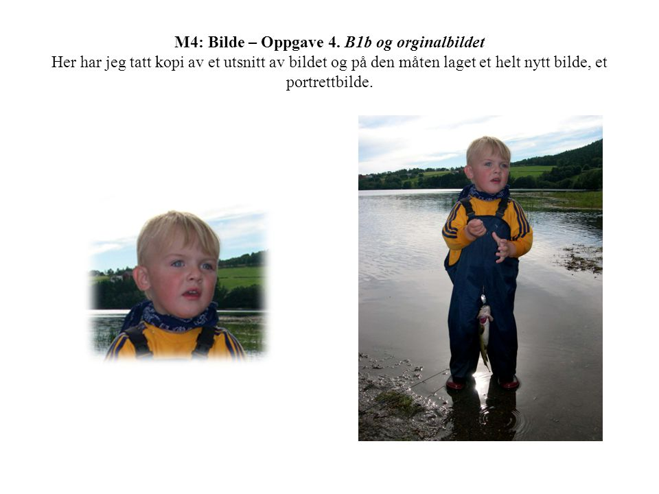 M4: Bilde – Oppgave 4.