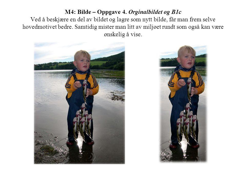 M4: Bilde – Oppgave 4. Orginalbildet og B1c Ved å beskjære en del av bildet og lagre som nytt bilde, får man frem selve hovedmotivet bedre. Samtidig m