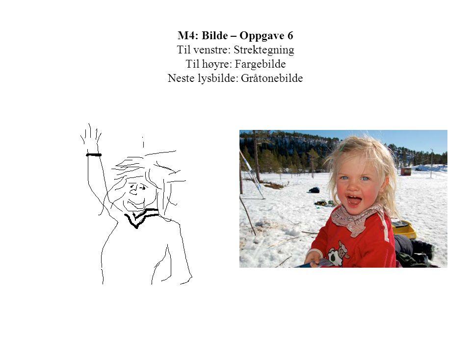 M4: Bilde – Oppgave 6 Til venstre: Strektegning Til høyre: Fargebilde Neste lysbilde: Gråtonebilde