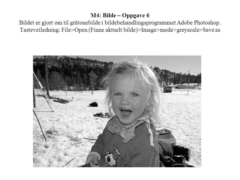 M4: Bilde – Oppgave 6 Bildet er gjort om til gråtonebilde i bildebehandlingsprogrammet Adobe Photoshop. Tasteveiledning: File>Open (Finne aktuelt bild