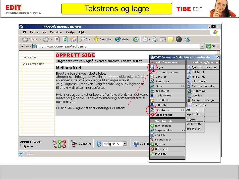 http://www.domene.no/redigering skriv inn mellomtittel her Mellomtittel Brødteksten skrives i dette feltet Ubegrenset linjeantall.