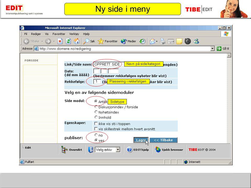 http://www.domene.no/redigering Plassering i rekkefølgen Sidetype OPPRETT SIDE 1 Navn på side/kategori Ny side i meny