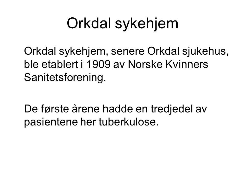 Orkdal sykehjem Orkdal sykehjem, senere Orkdal sjukehus, ble etablert i 1909 av Norske Kvinners Sanitetsforening.