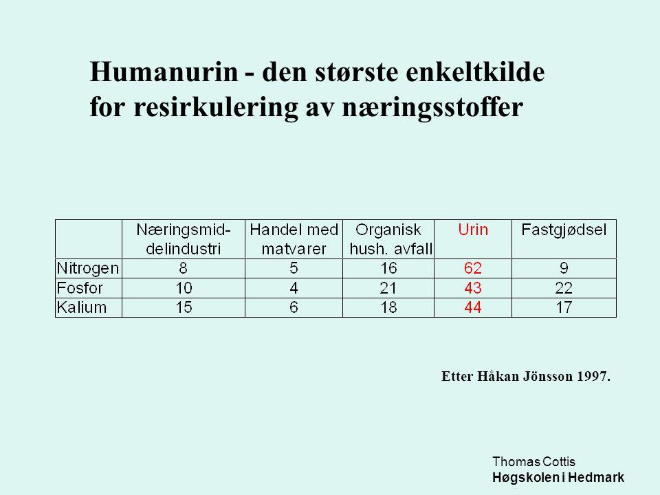 Thomas Cottis Høgskolen i Hedmark Humanurin - den største enkeltkilde for resirkulering av næringsstoffer Så mye næring produserer en voksen person pr år – og det meste havner i urinen: Etter Bjørn Vinnerås 1998.