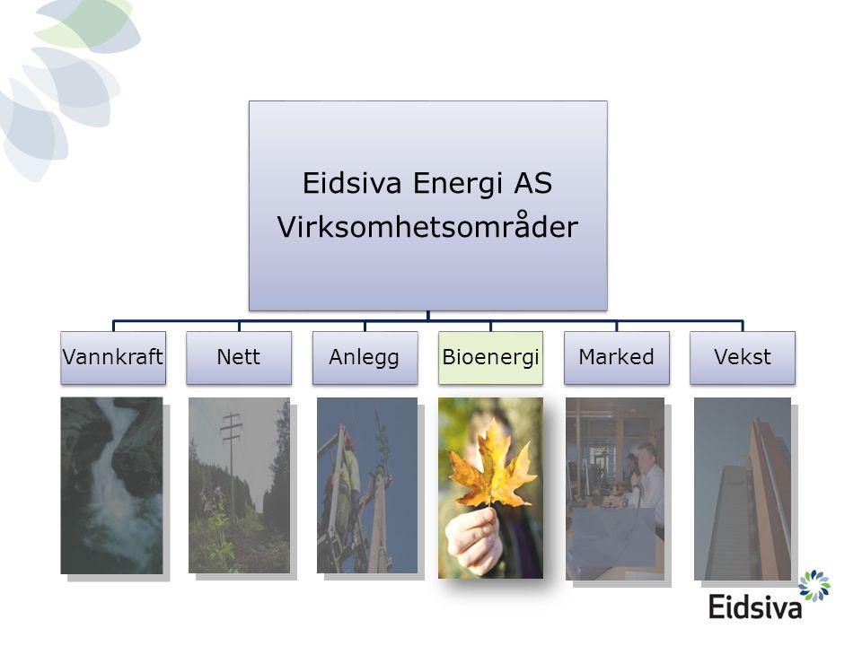 Minoritetseierskap  Oplandske Bioenergi AS  Åsnes Fjernvarme AS Minoritetseierskap  Oplandske Bioenergi AS  Åsnes Fjernvarme AS Trehørningen Eidsiva Bioenergi AS har 5 anlegg i drift Lillehammer Brumunddal (6 GWh) Moelv Gjøvik Lena Fjernvarme (7 GWh) 51 % Kongsvinger Bioenergi 51% Hamar (55 GWh) • Børstad • Storhamar • Espern Trysil Fjernvarme (40 GWh) 65% Kongsvinger Nord (12 GWh)