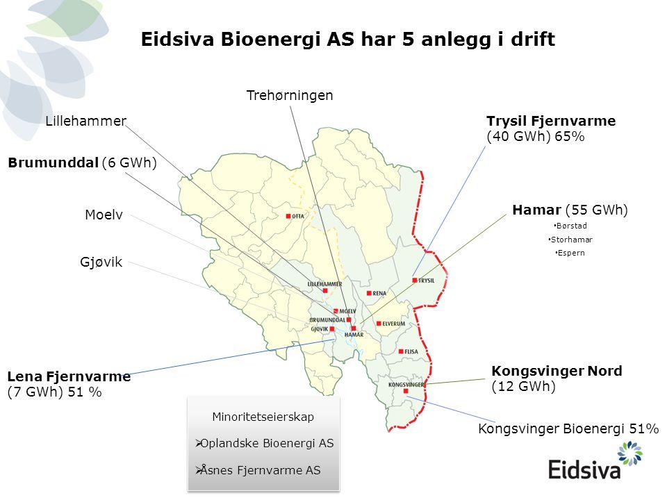 Minoritetseierskap  Oplandske Bioenergi AS  Åsnes Fjernvarme AS Minoritetseierskap  Oplandske Bioenergi AS  Åsnes Fjernvarme AS Trehørningen Eidsi