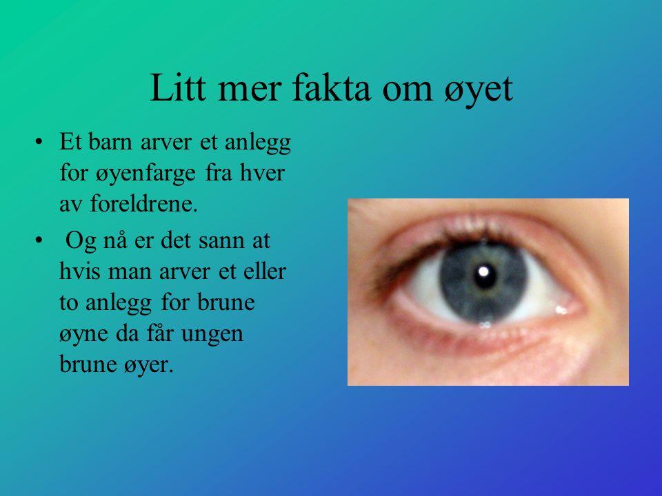 Litt mer fakta om øyet •Et barn arver et anlegg for øyenfarge fra hver av foreldrene. • Og nå er det sann at hvis man arver et eller to anlegg for bru