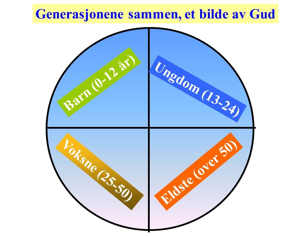 Barn (0-12 år) Ungdom (13-24) Voksne (25-50) Eldste (over 50) Generasjonene sammen, et bilde av Gud