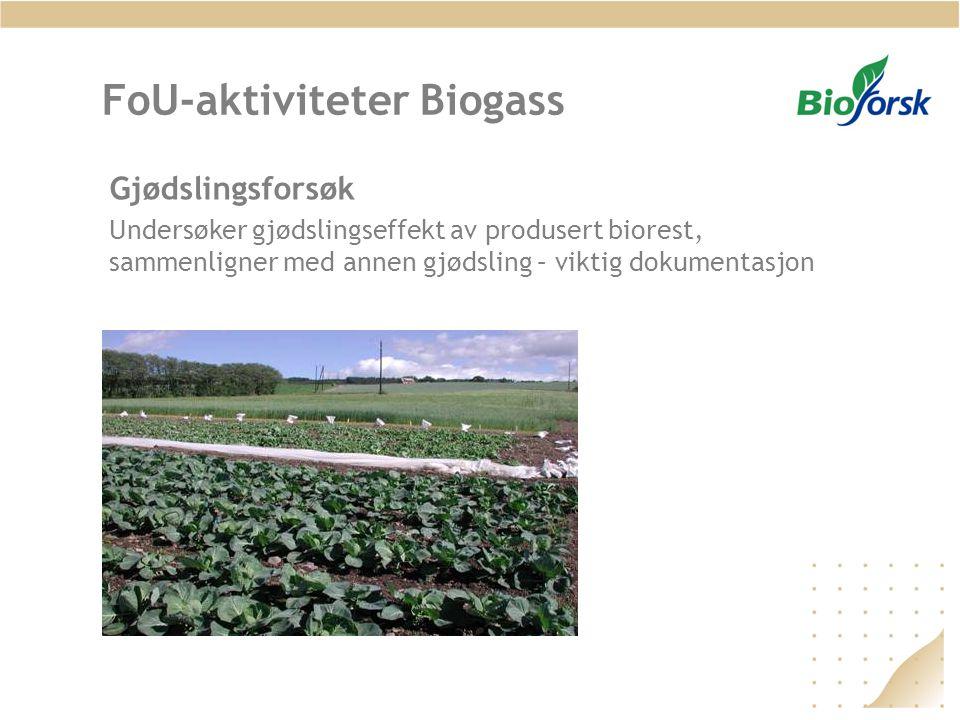 FoU-aktiviteter Biogass Gjødslingsforsøk Undersøker gjødslingseffekt av produsert biorest, sammenligner med annen gjødsling – viktig dokumentasjon