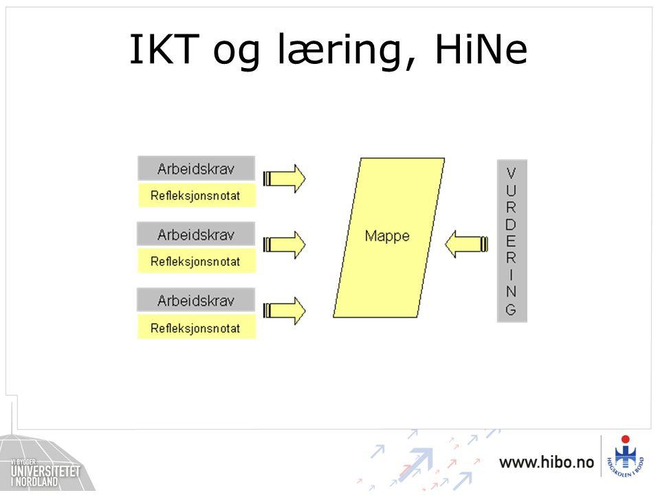 IKT og læring, HiNe