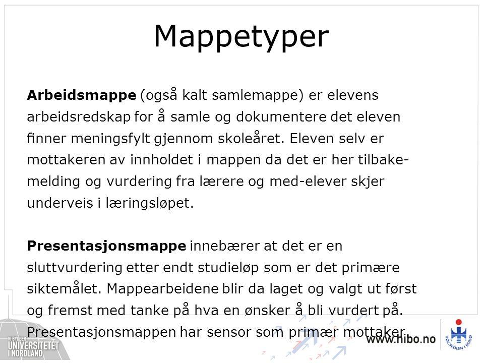 Mappetyper Arbeidsmappe (også kalt samlemappe) er elevens arbeidsredskap for å samle og dokumentere det eleven finner meningsfylt gjennom skoleåret.