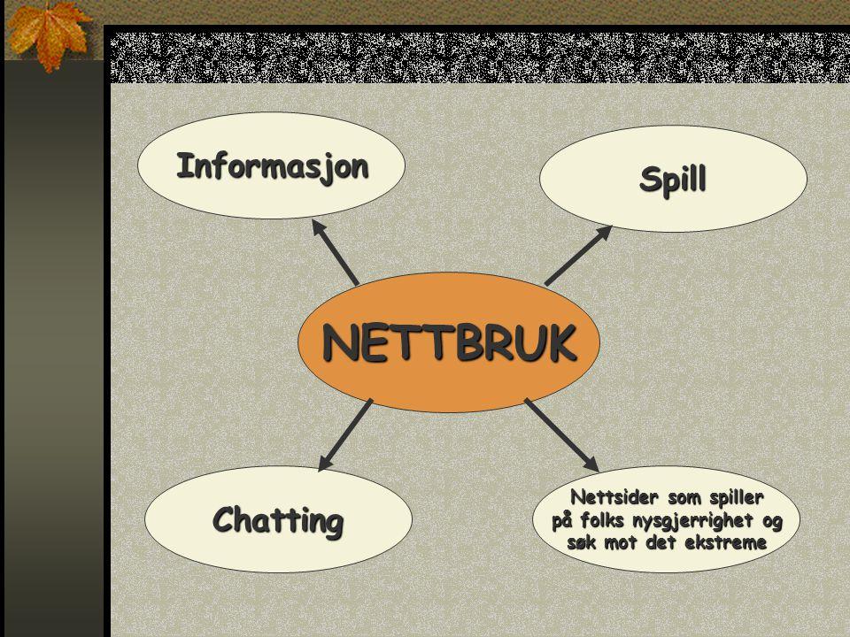 NETTBRUK Informasjon Spill Nettsider som spiller på folks nysgjerrighet og søk mot det ekstreme Chatting