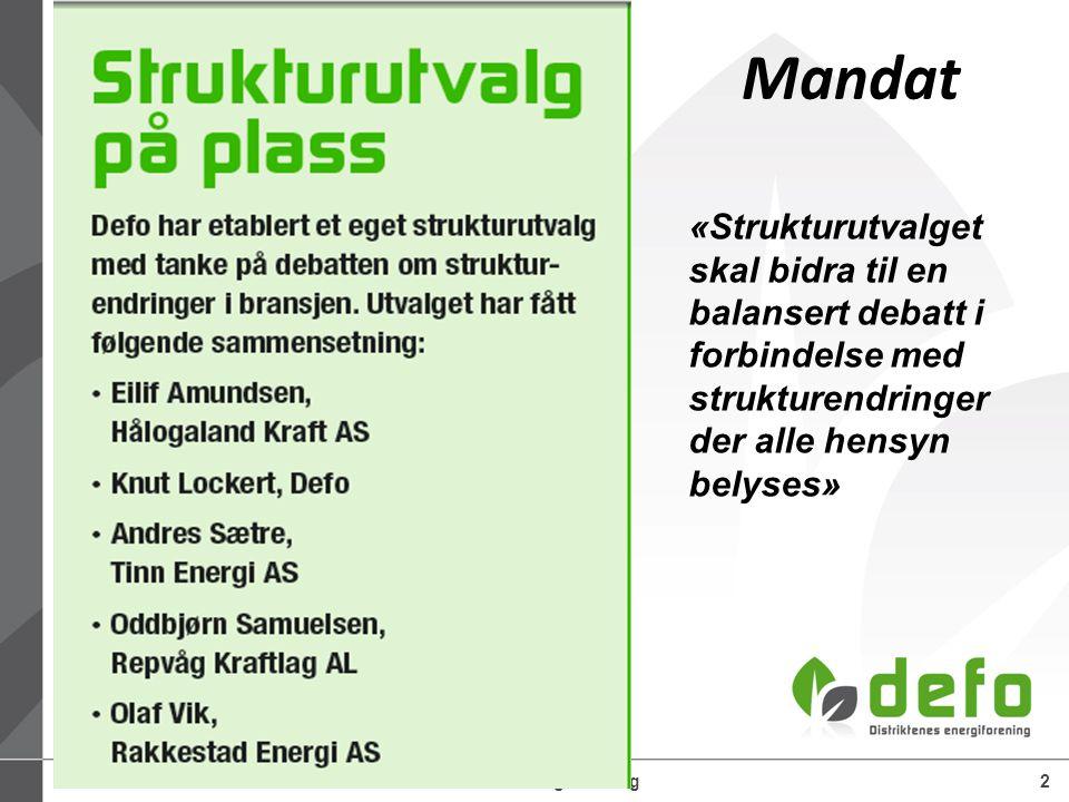 25.06.2014Defo – Distriktenes energiforening2 Mandat «Strukturutvalget skal bidra til en balansert debatt i forbindelse med strukturendringer der alle