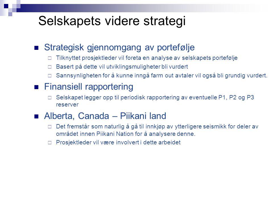 Selskapets videre strategi  Strategisk gjennomgang av portefølje  Tilknyttet prosjektleder vil foreta en analyse av selskapets portefølje  Basert p