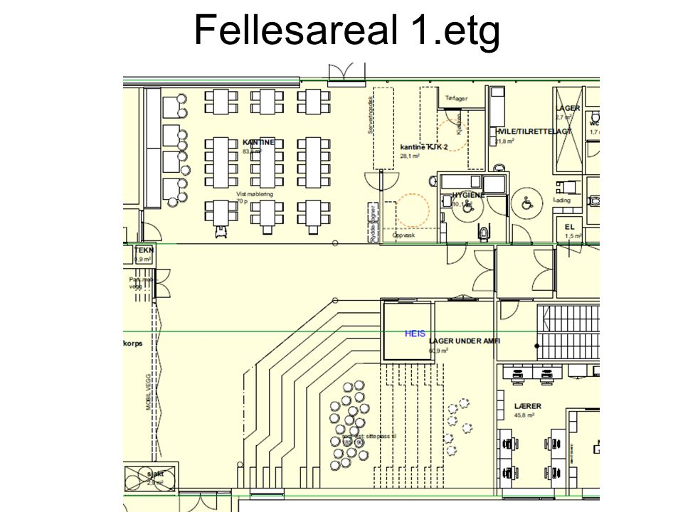 Fellesareal 1.etg