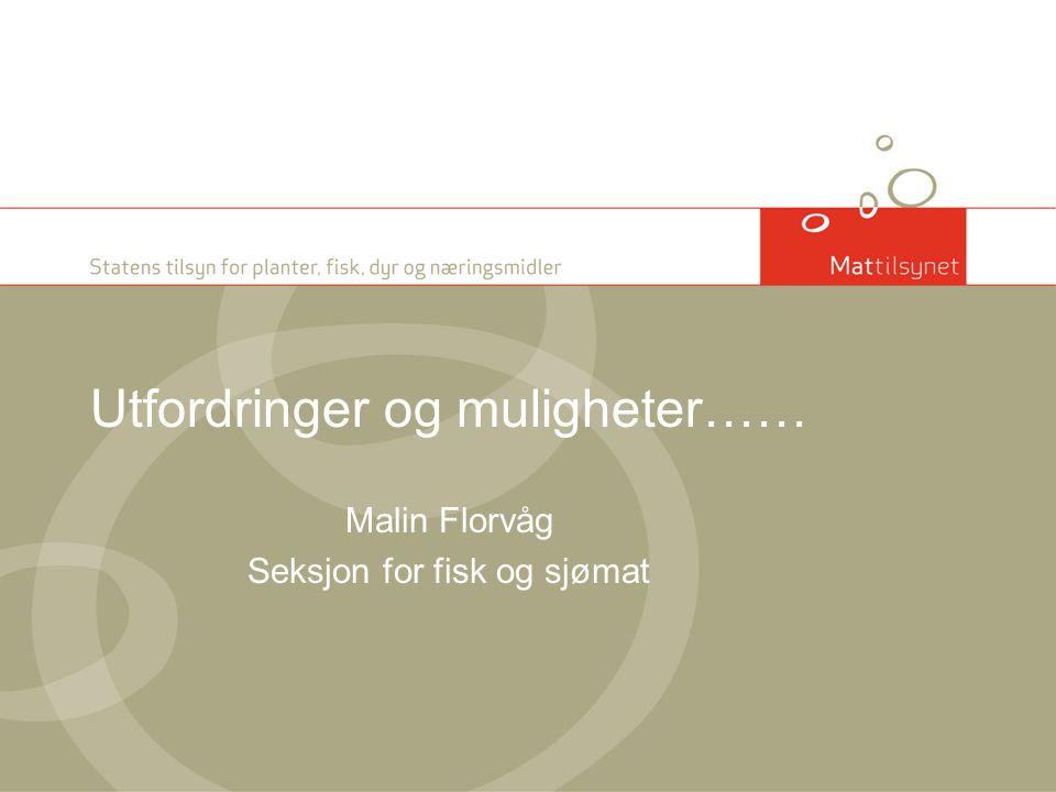 Utfordringer og muligheter…… Malin Florvåg Seksjon for fisk og sjømat