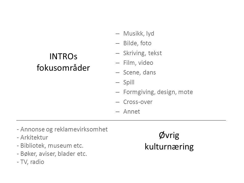 INTROs fokusområder – Musikk, lyd – Bilde, foto – Skriving, tekst – Film, video – Scene, dans – Spill – Formgiving, design, mote – Cross-over – Annet