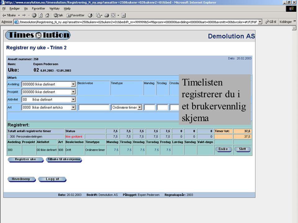Timelisten registrerer du i et brukervennlig skjema