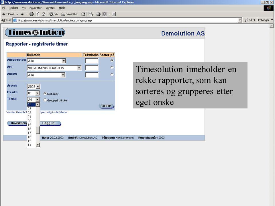 Timesolution inneholder en rekke rapporter, som kan sorteres og grupperes etter eget ønske