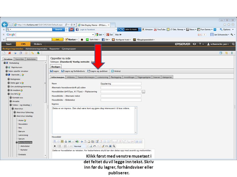 Klikk først med venstre musetast i det feltet du vil legge inn tekst. Skriv inn før du lagrer, forhåndsviser eller publiserer.
