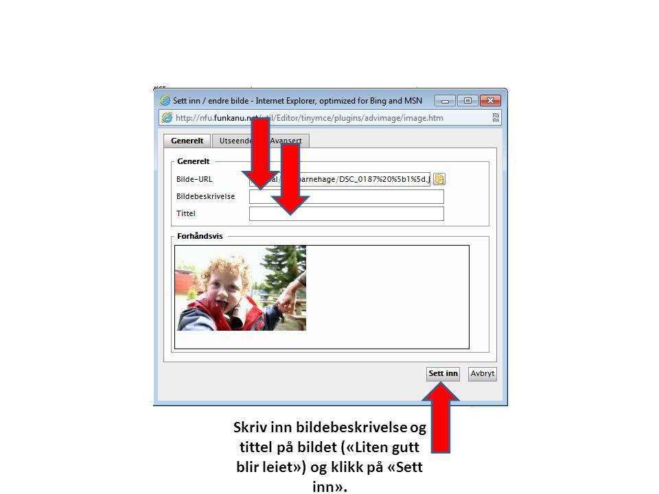 Skriv inn bildebeskrivelse og tittel på bildet («Liten gutt blir leiet») og klikk på «Sett inn».