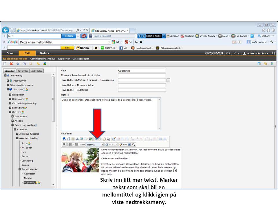Skriv inn litt mer tekst. Marker tekst som skal bli en mellomtittel og klikk igjen på viste nedtrekksmeny.