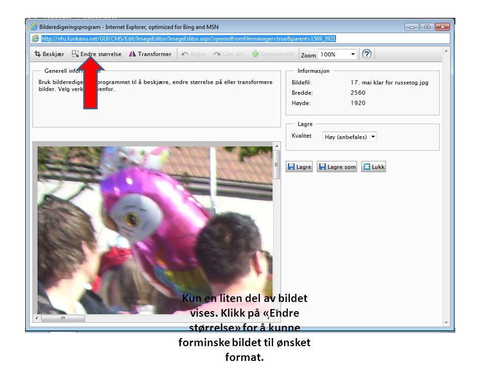 Kun en liten del av bildet vises. Klikk på «Endre størrelse» for å kunne forminske bildet til ønsket format.