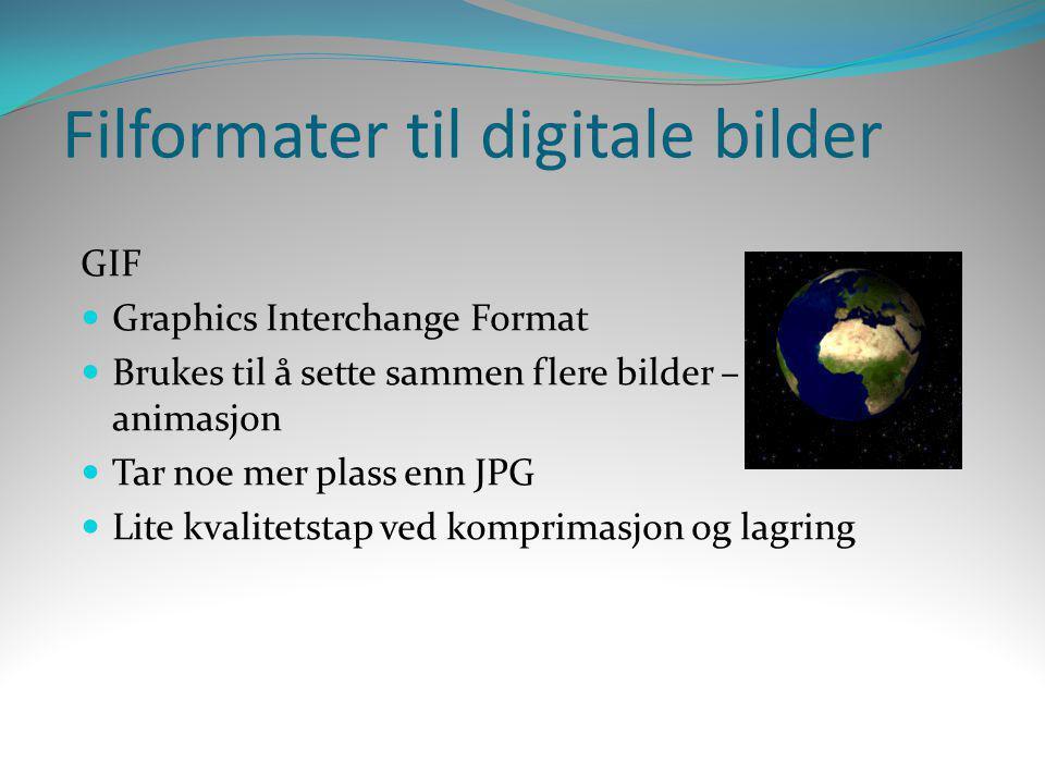 Filformater til digitale bilder GIF  Graphics Interchange Format  Brukes til å sette sammen flere bilder – animasjon  Tar noe mer plass enn JPG  L