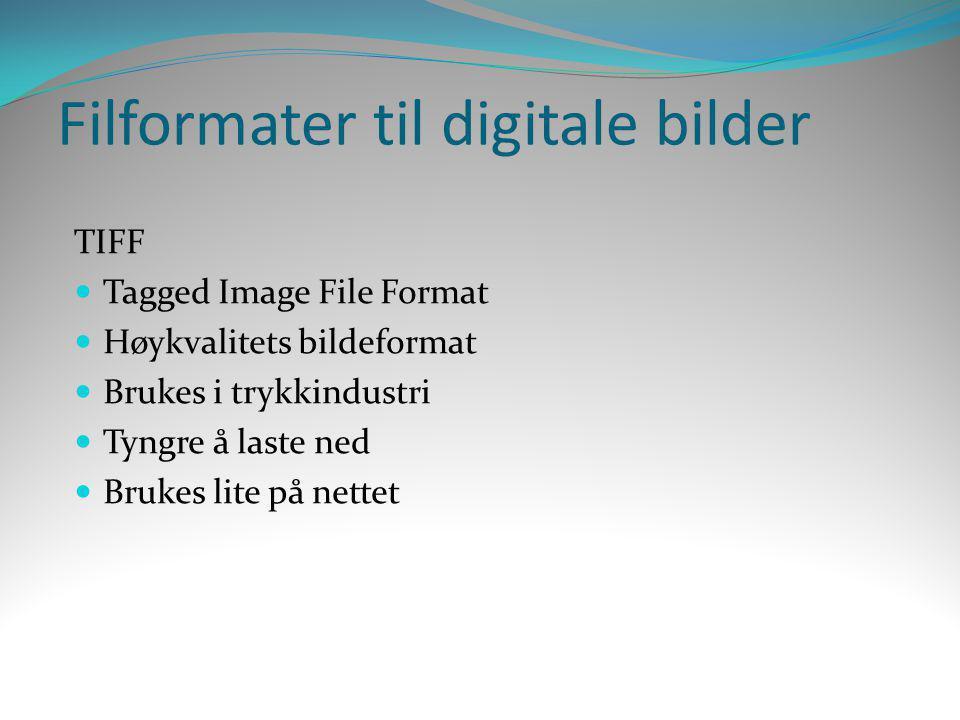 Filformater til digitale bilder TIFF  Tagged Image File Format  Høykvalitets bildeformat  Brukes i trykkindustri  Tyngre å laste ned  Brukes lite