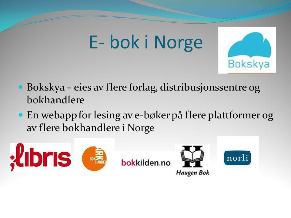 E- bok i Norge  Bokskya – eies av flere forlag, distribusjonssentre og bokhandlere  En webapp for lesing av e-bøker på flere plattformer og av flere