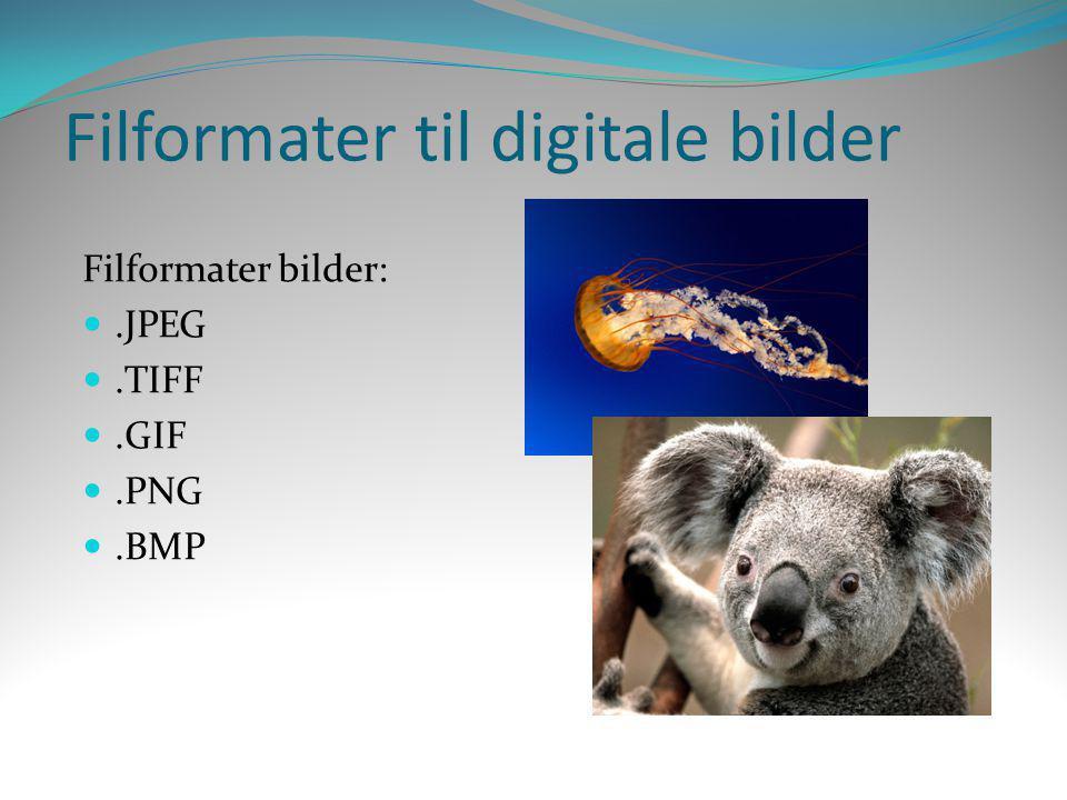 Filformater til digitale bilder Filformater bilder: .JPEG .TIFF .GIF .PNG .BMP