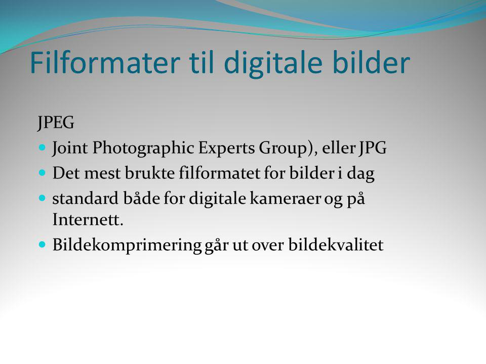 Filformater til digitale bilder JPEG  Joint Photographic Experts Group), eller JPG  Det mest brukte filformatet for bilder i dag  standard både for