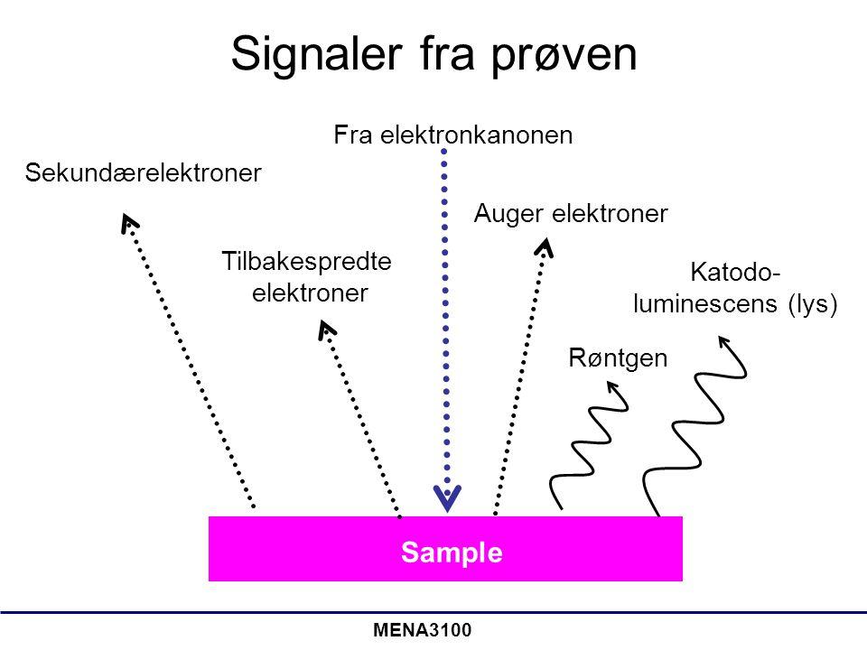 MENA3100 Signaler fra prøven Fra elektronkanonen Sekundærelektroner Tilbakespredte elektroner Auger elektroner Røntgen Katodo- luminescens (lys) Sampl