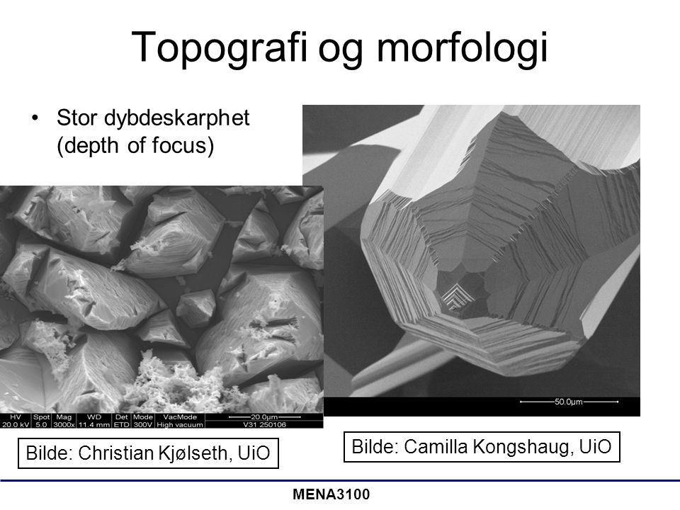 MENA3100 Topografi og morfologi •Stor dybdeskarphet (depth of focus) Bilde: Camilla Kongshaug, UiO Bilde: Christian Kjølseth, UiO