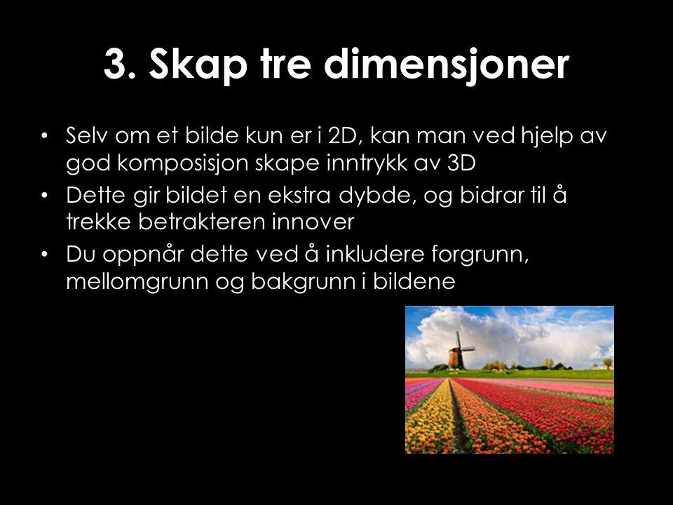3. Skap tre dimensjoner • Selv om et bilde kun er i 2D, kan man ved hjelp av god komposisjon skape inntrykk av 3D • Dette gir bildet en ekstra dybde,