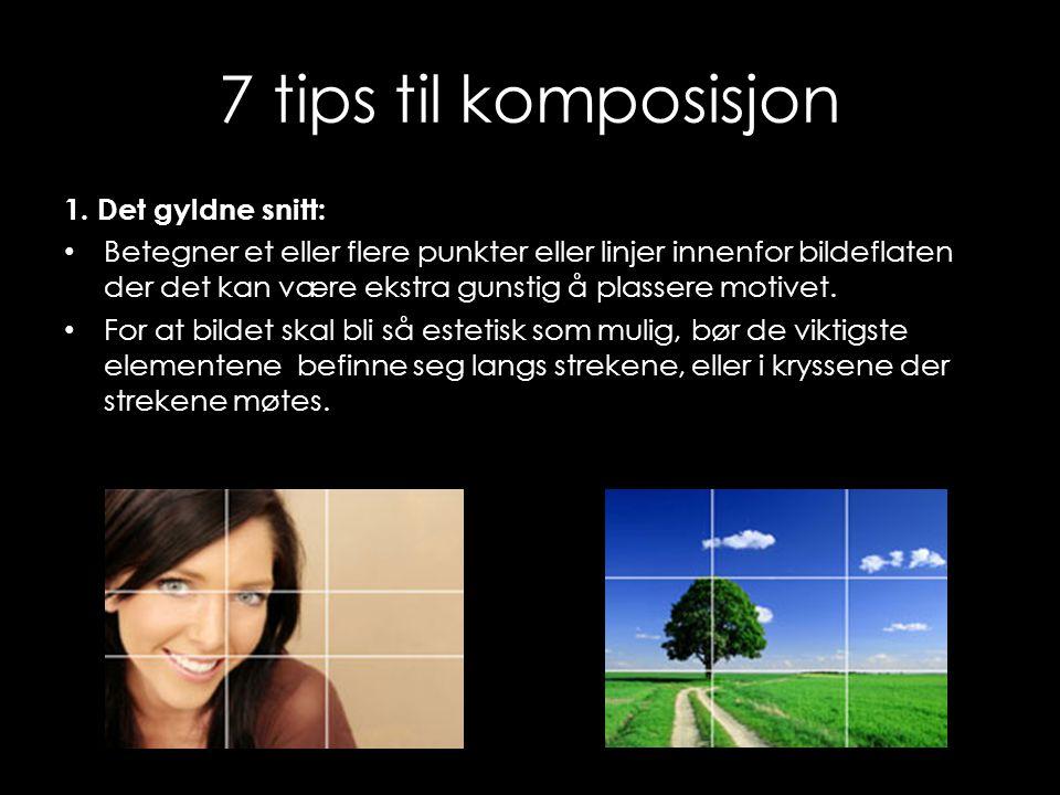 7 tips til komposisjon 1. Det gyldne snitt: • Betegner et eller flere punkter eller linjer innenfor bildeflaten der det kan være ekstra gunstig å plas