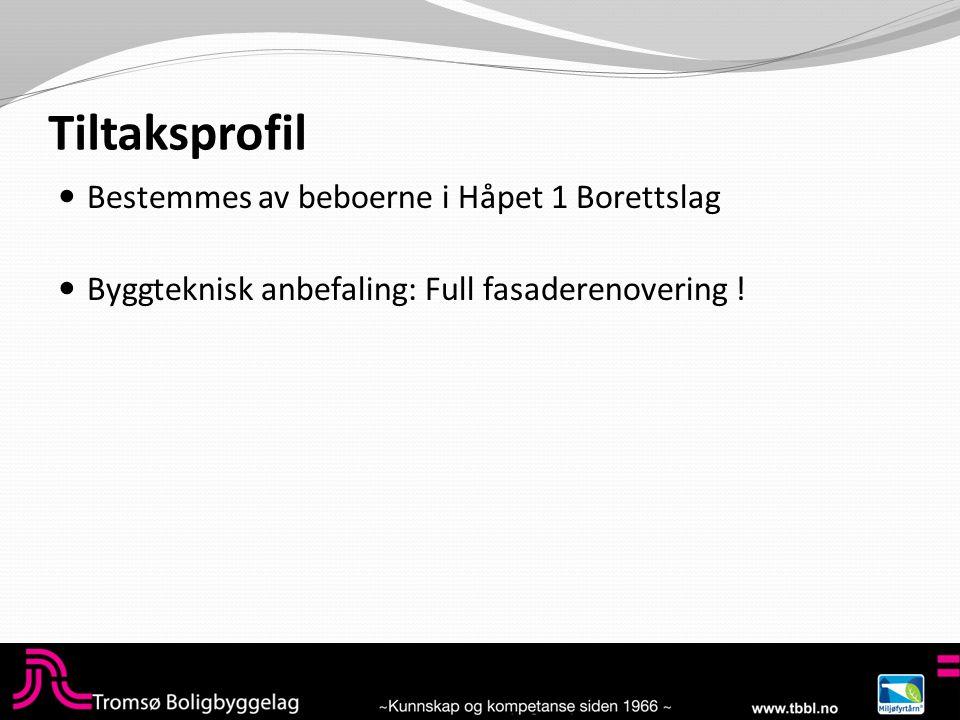 Tiltaksprofil  Bestemmes av beboerne i Håpet 1 Borettslag  Byggteknisk anbefaling: Full fasaderenovering !