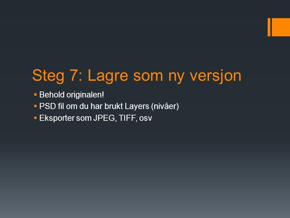 Steg 7: Lagre som ny versjon  Behold originalen.