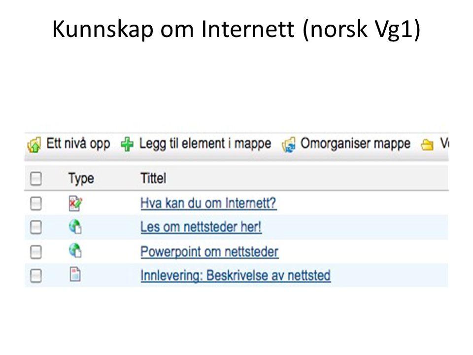 Kunnskap om Internett (norsk Vg1)