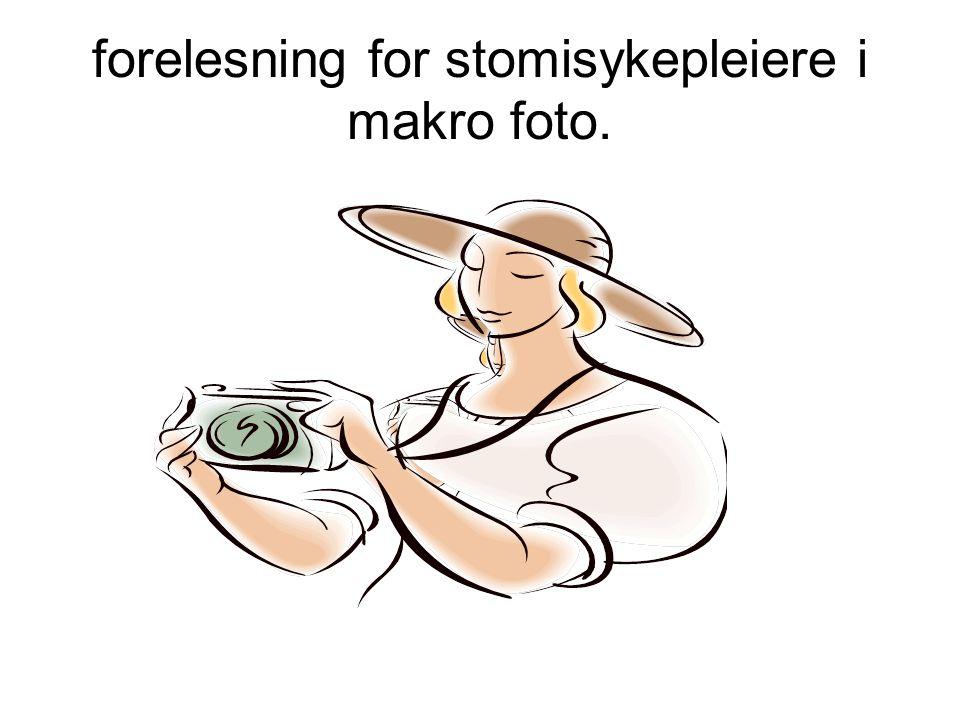forelesning for stomisykepleiere i makro foto.