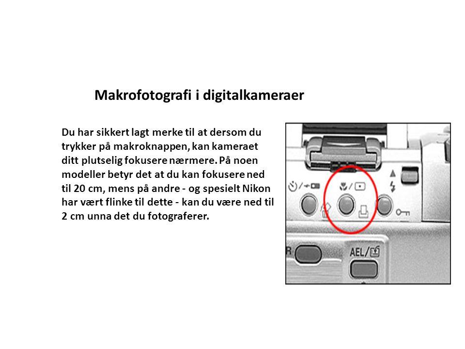 Hva er makro/teleobjektiver MakroTele