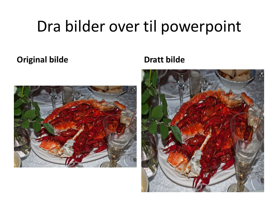 Dra bilder over til powerpoint Original bildeDratt bilde